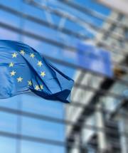 EU Waving Flag