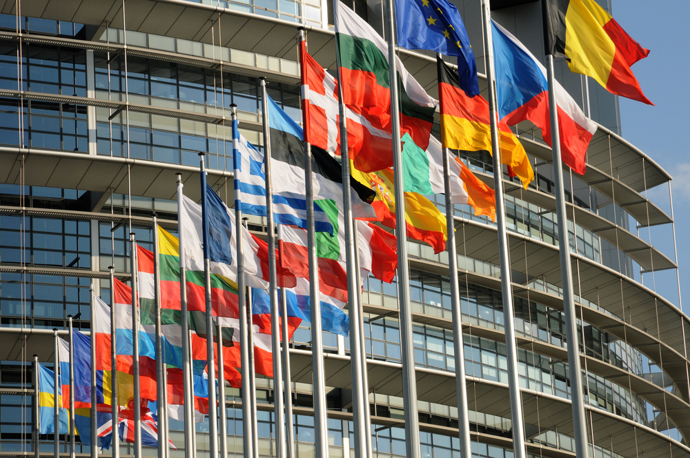 The Central Role of European Governments in NGO Funding